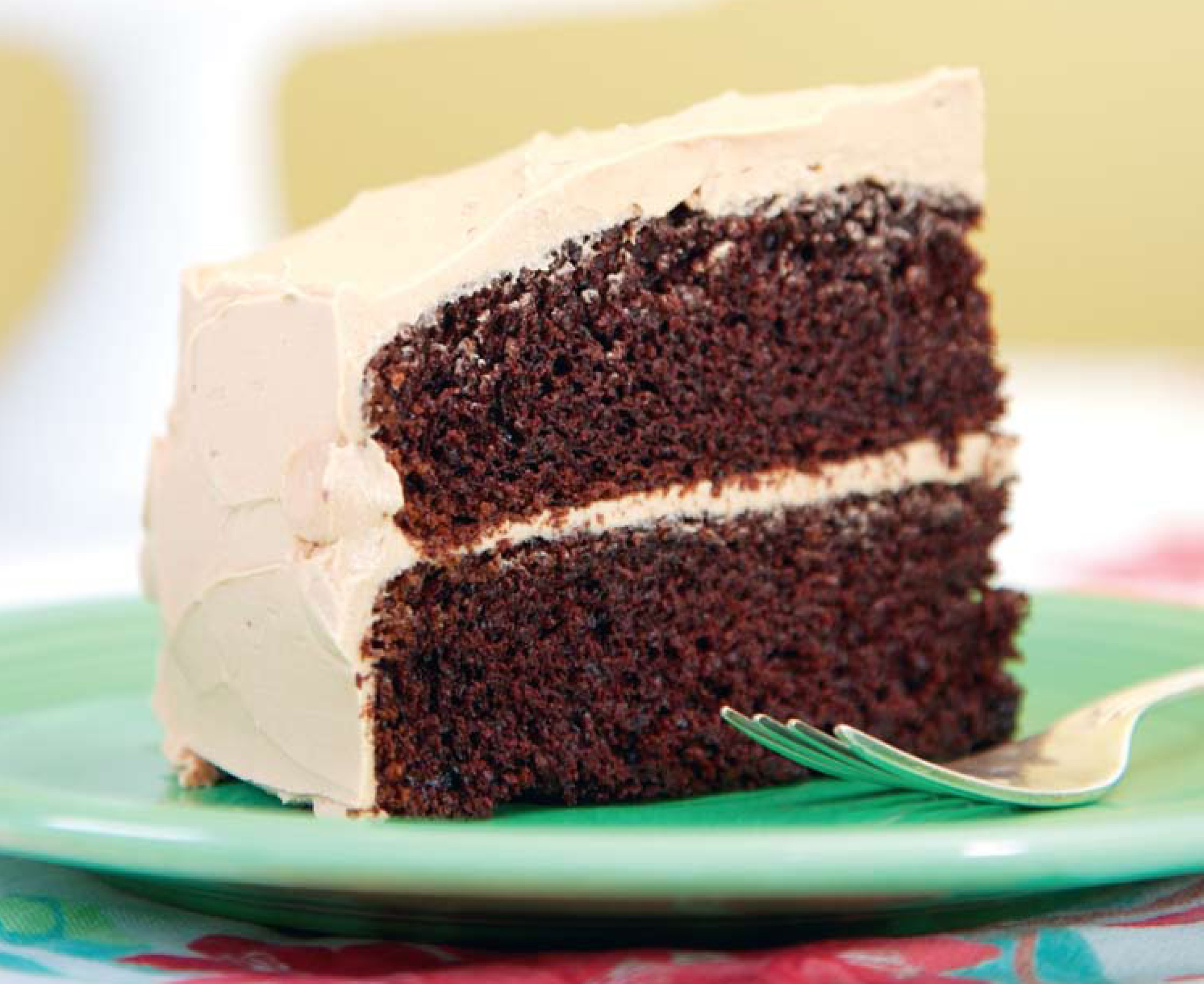 Two Layer Chocolate Cake Recipe From Scratch