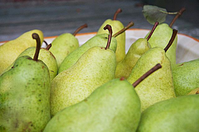 Pears from Joanne's Garden - TheMessyBaker.com