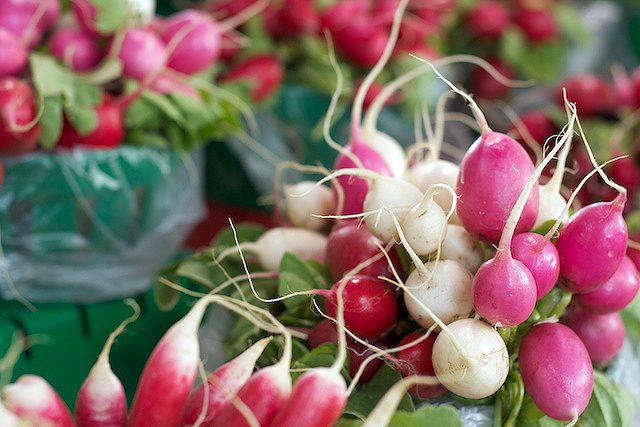 Radishes at the Farmers' Market - TheMessyBaker