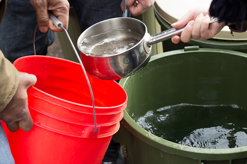 Transferring sap for boiling