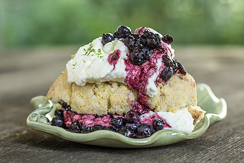 Blueberry-cornmeal-scone-side
