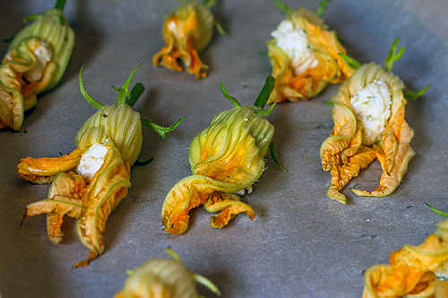 Baked Zucchini Flowers With Ricotta The Messy Baker