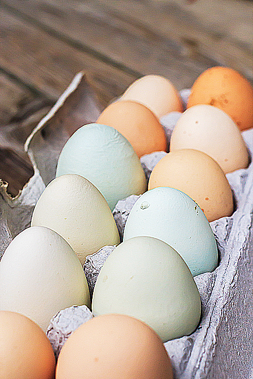 coloured eggs-1