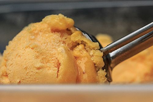 peach sorbet scoop