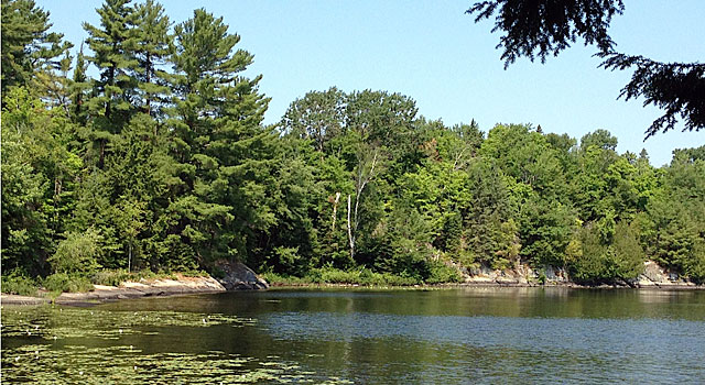 Peaceful lake in Ontario's cottage country.