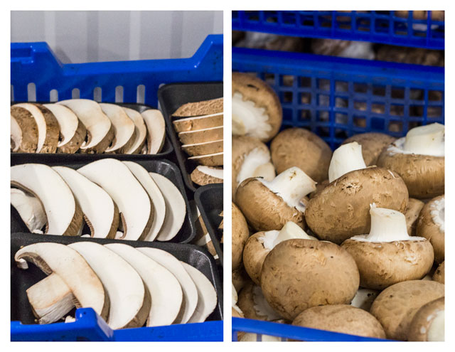 Mushrooms being sorted and ready to be packed - TheMessyBaker.com