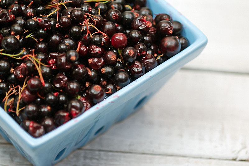 Black currants for making jam by The Messy Baker